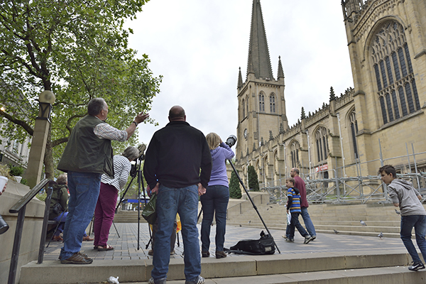 Peregrine watch Wakefield