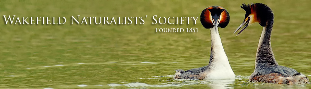Wakefield Naturalists' Society | nature club Wakefield