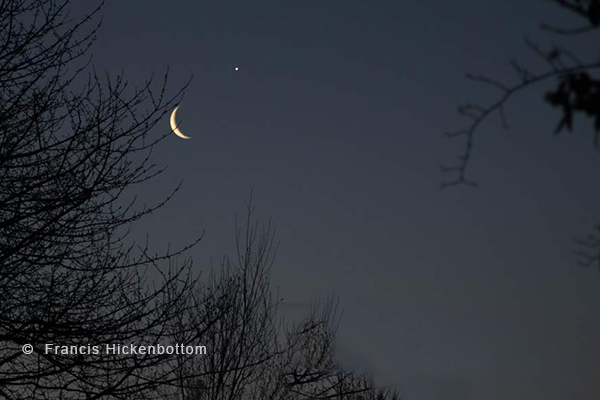 The moon & Venus